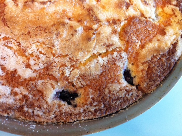Blackberry Cornmeal Cake by belinda