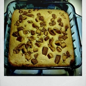 Peanut Butter Cup Blondies by alchemisty