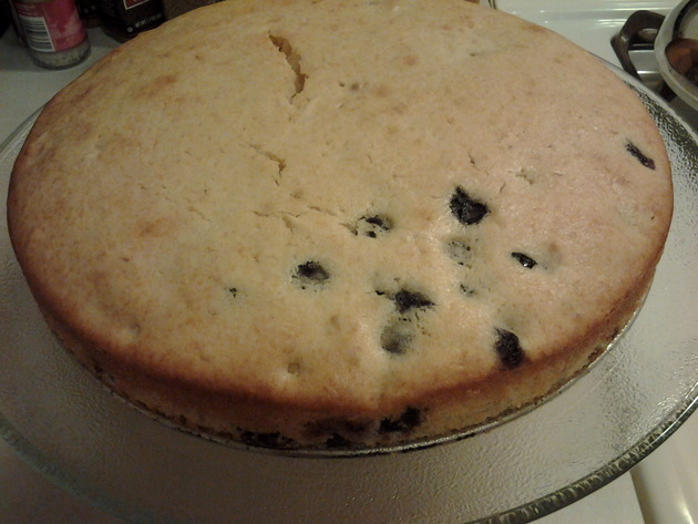One-Bowl No-Mixer Cakes: Blueberry Almond by alchemisty