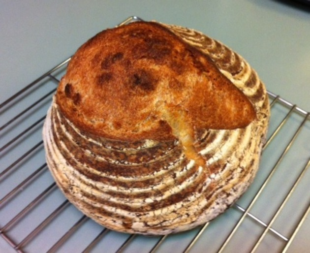 Nancy Silverton's Basic Loaf: Country White by belinda