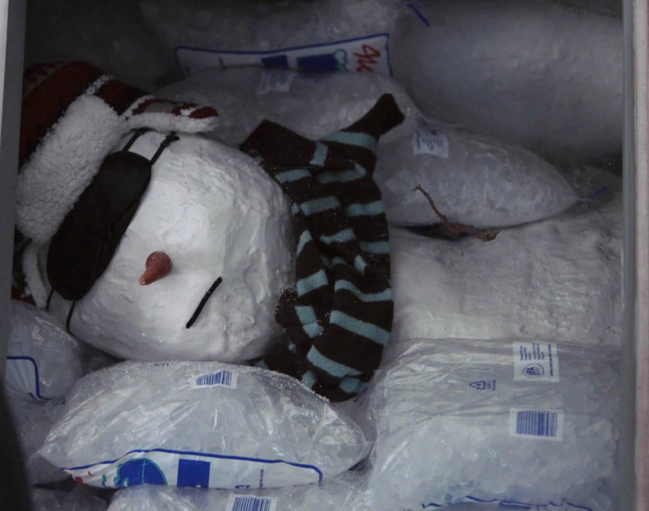 snowman_web_icemachine