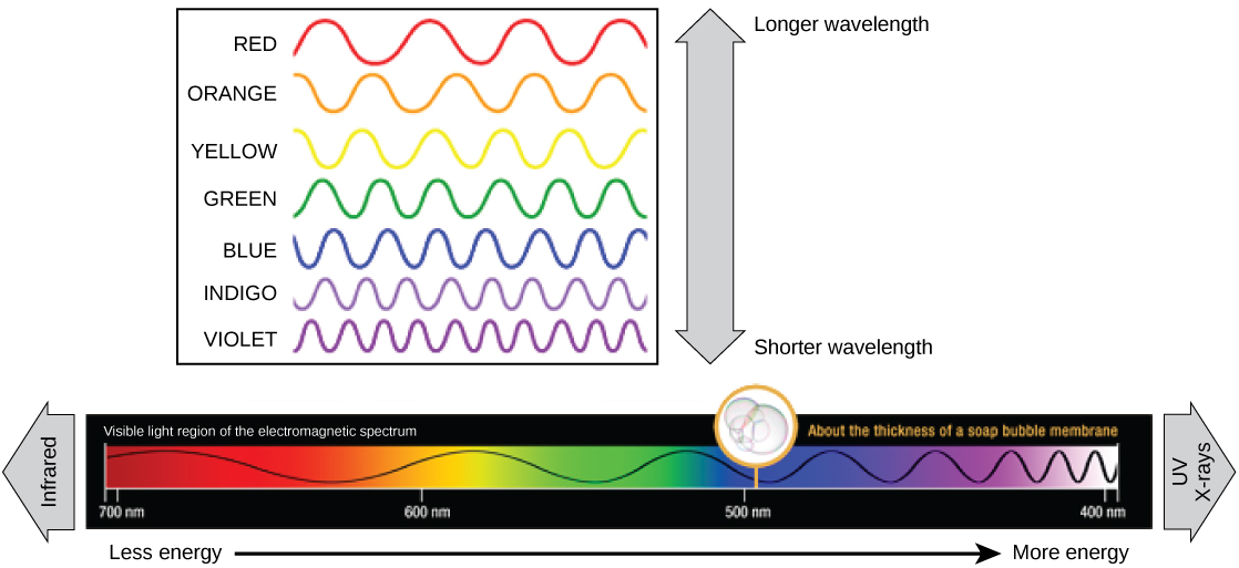how do different light wavelengths affect When it comes to light phenomena, there are different ways to comprehend them: we can use a wave picture (hyugens-fresnel), we can use the most modern picture we have (qed) or we can use something a bit more intermediate which is the picture of light rays travelling from one point to another.