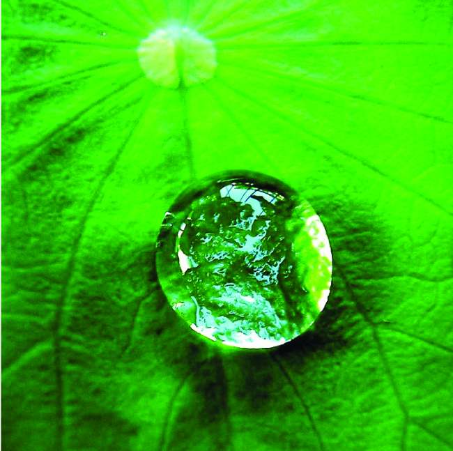A close-up photo of a water droplet on a leaf is shown. The water droplet is not perfectly spherical.