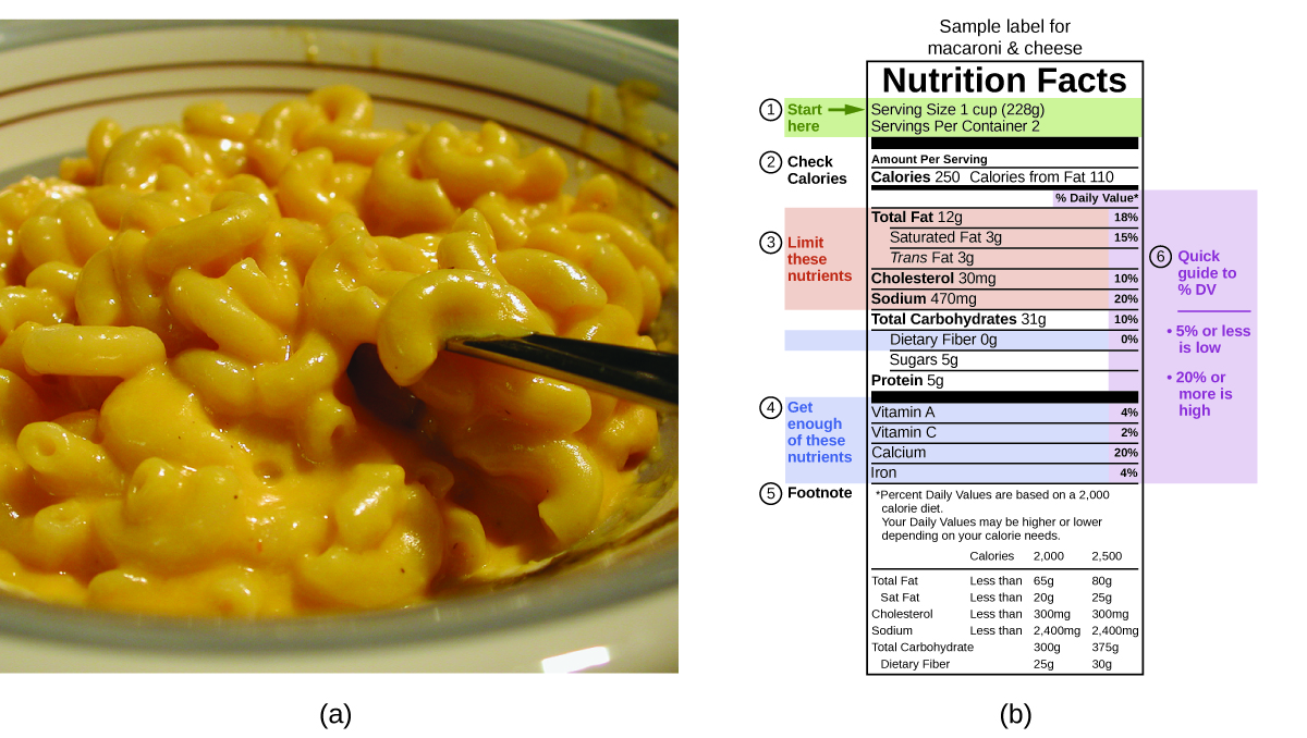 "Two pictures are shown and labeled a and b. Picture a shows a close-up of a bowl of macaroni and cheese. Picture b is a food label that contains highlighted information in a table format. The top of the label reads ""Sample label for macaroni and cheese."" Below this are the words ""Nutrition facts."" Below this are two lines of highlighted text that read ""Serving size one cup (228 g)"" and ""Servings per container 2."" A label to the left of these lines reads ""Start here"" and a right-facing arrow is beside these words. Below this are the words ""check calories"" which lie to the left of the phrases ""Amount per serving"" which is above the words ""Calories 250"" and ""Calories from fat 210."" The next segment of the label is highlighted and contains five phrases ""Total fat 12 g,"" ""Saturated fat 3 g,"" ""Trans fat 3 g,"" ""Cholesterol 30 m g,"" and ""Sodium 470 m g."" The phrase ""Limit these nutrients"" lies to the left of these five phrases. The phrase below these is ""Total carbohydrates 31 g"" and is followed by a highlighted phrase, ""Dietary fiber 0 g."" Below this are the phrases ""Sugars 5 g"" and ""Proteins 5 g."" Below this is a highlighted portion containing the phrases ""Vitamin A,"" ""Vitamin C,"" ""Calcium,"" and ""Iron."" A label to the left of these terms states ""Get enough of these nutrients."" The bottom of the label is labeled ""Footnote"" and reads ""Percent daily values are based on a 2,000 calorie diet. Your daily values may be higher or lower depending on your calorie needs."" Each of the highlighted terms in the table are in line with a percentage value to the right of the table. A note on the outer right of the table states ""Quick guide to % DV"", ""5% or less is low"" and ""20% or more is high. The daily value for total fat is 18%, for saturated fat is 15%, for cholesterol is 10%, for sodium is 20%, for total carbohydrates is 10%, for dietary fiber is 0%, for vitamin A is 4%, for vitamin C is 2%, for calcium is 20%, and for iron is 4%."" At the very bottom is a table that indicates calories at 2,000 and 2,500. For total fat the table indicates less than 65 g for 2,000 calories and 80 g from 2,500 calories. For saturated fat the table indicates less than 20 g for 2,000 calories and 25 g for 2,500 calories. For cholesterol the table indicates less than 300 m g for 2,000 calories and 300 m g for 2,500 calories. For sodium the table indicates less than 2,400 m g for 2,000 calories and 2,400 m g for 2,500 calories. For total carbohydrate the table indicates 300 g for 2,000 calories and 375 g for 2,500 calories. For dietary fiber the table indicates 25 g for 2,000 calories and 30 g for 2,500 calories."
