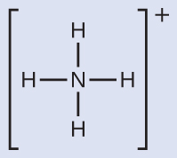 A Lewis structure depicts a nitrogen atom that is single bonded to four hydrogen atoms. The structure is surrounded by brackets and has a superscripted positive sign.