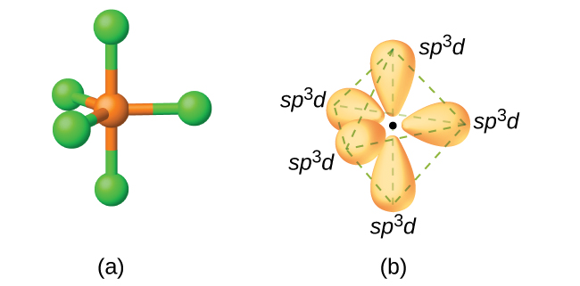 """Two images are shown and labeled """"a"""" and """"b."""" Image a depicts a ball-and-stick model in a trigonal bipyramidal arrangement. Image b depicts the hybrid orbitals in the same arrangement and each is labeled, """"s p superscript three d."""""""