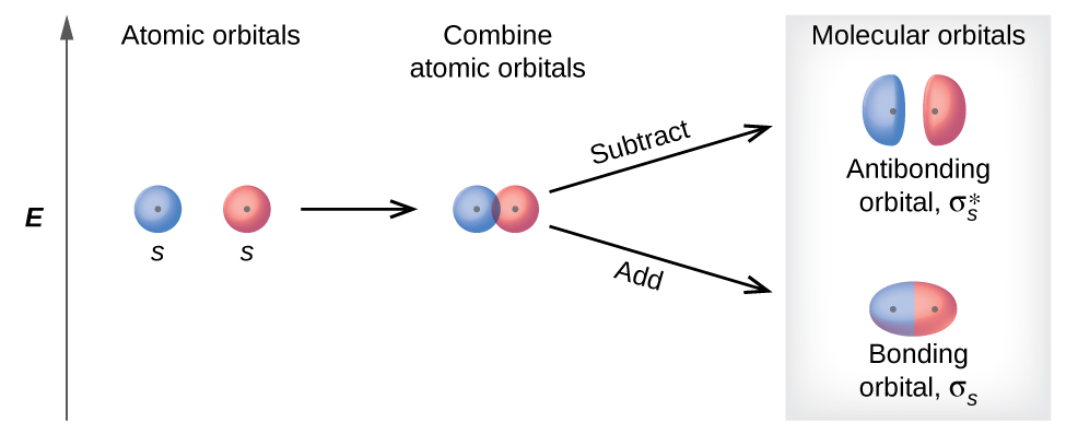 "A diagram is shown that depicts a vertical upward-facing arrow that lies to the left of all the other portions of the diagram and is labeled, ""E."" To the immediate right of the midpoint of the arrow are two circles each labeled with a positive sign, the letter S, and the phrase, ""Atomic orbitals."" These are followed by a right-facing horizontal arrow that points to the same two circles labeled with plus signs, but they are now touching and are labeled, ""Combine atomic orbitals."" Two right-facing arrows lead to the last portion of the diagram, one facing upward and one facing downward. The upper arrow is labeled, ""Subtract,"" and points to two oblong ovals labeled with plus signs, and the phrase, ""Antibonding orbitals sigma subscript s superscript asterisk."" The lower arrow is labeled, ""Add,"" and points to an elongated oval with two plus signs that is labeled, ""Bonding orbital sigma subscript s."" The heading over the last section of the diagram are the words, ""Molecular orbitals."""