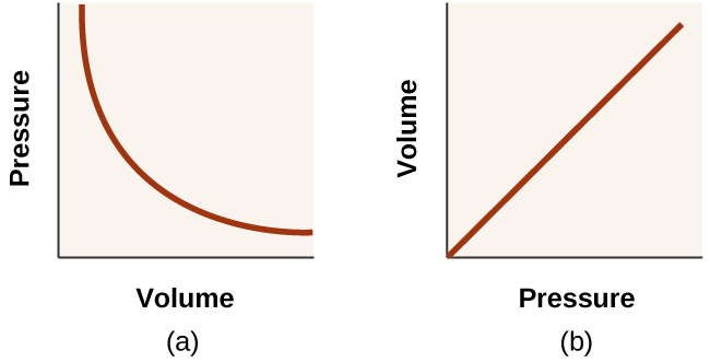 This diagram shows two graphs. In a, a graph is shown with volume on the horizontal axis and pressure on the vertical axis. A curved line is shown on the graph showing a decreasing trend with a decreasing rate of change. In b, a graph is shown with volume on the horizontal axis and one divided by pressure on the vertical axis. A line segment, beginning at the origin of the graph, shows a positive, linear trend.