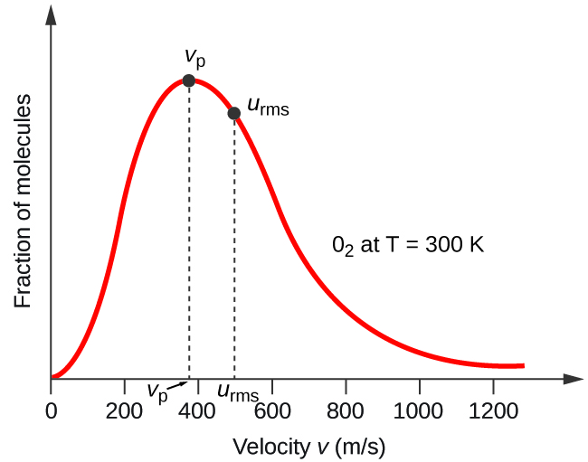 "A graph is shown. The horizontal axis is labeled, ""Velocity v ( m divided by s )."" This axis is marked by increments of 20 beginning at 0 and extending up to 120. The vertical axis is labeled, ""Fraction of molecules."" A positively or right-skewed curve is shown in red which begins at the origin and approaches the horizontal axis around 120 m per s. At the peak of the curve, a point is indicated with a black dot and is labeled, ""v subscript p."" A vertical dashed line extends from this point to the horizontal axis at which point the intersection is labeled, ""v subscript p."" Slightly to the right of the peak a second black dot is placed on the curve. This point is labeled, ""v subscript r m s."" A vertical dashed line extends from this point to the horizontal axis at which point the intersection is labeled, ""v subscript r m s."" The label, ""O subscript 2 at T equals 300 K"" appears in the open space to the right of the curve."
