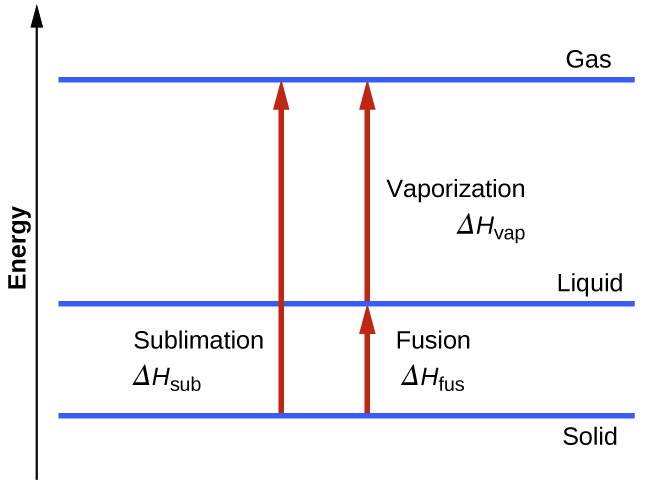 "A diagram is shown with a vertical line drawn on the left side and labeled ""Energy"" and three horizontal lines drawn near the bottom, lower third and top of the diagram. These three lines are labeled, from bottom to top, ""Solid,"" ""Liquid"" and ""Gas."" Near the middle of the diagram, a vertical, upward-facing arrow is drawn from the solid line to the gas line and labeled ""Sublimation, delta sign, H, subscript sub."" To the right of this arrow is a second vertical, upward-facing arrow that is drawn from the solid line to the liquid line and labeled ""Fusion, delta sign, H, subscript fus."" Above the second arrow is a third arrow drawn from the liquid line to the gas line and labeled, ""Vaporization, delta sign, H, subscript vap."""