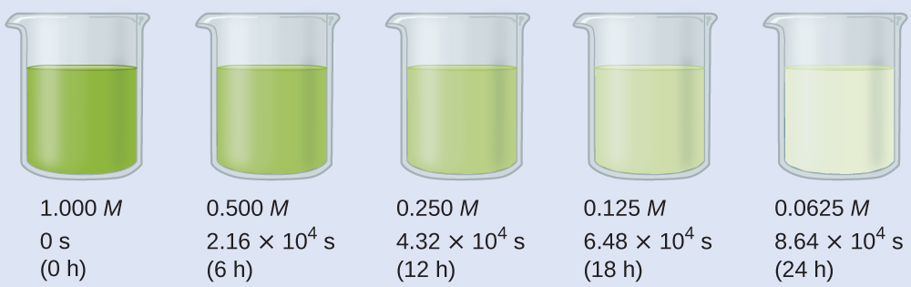 """A diagram of 5 beakers is shown, each approximately half-filled with colored substances. Beneath each beaker are three rows of text. The first beaker contains a bright green substance and is labeled below as, """"1.000 M, 0 s, and ( 0 h )."""" The second beaker contains a slightly lighter green substance and is labeled below as, """"0.500 M, 2.16 times 10 superscript 4 s, and ( 6 h )."""" The third beaker contains an even lighter green substance and is labeled below as, """"0.250 M, 4.32 times 10 superscript 4 s, and ( 12 h )."""" The fourth beaker contains a green tinted substance and is labeled below as, """"0.125 M, 6.48 times 10 superscript 4 s, and ( 18 h )."""" The fifth beaker contains a colorless substance and is labeled below as, """"0.0625 M, 8.64 times 10 superscript 4 s, and ( 24 h )."""""""