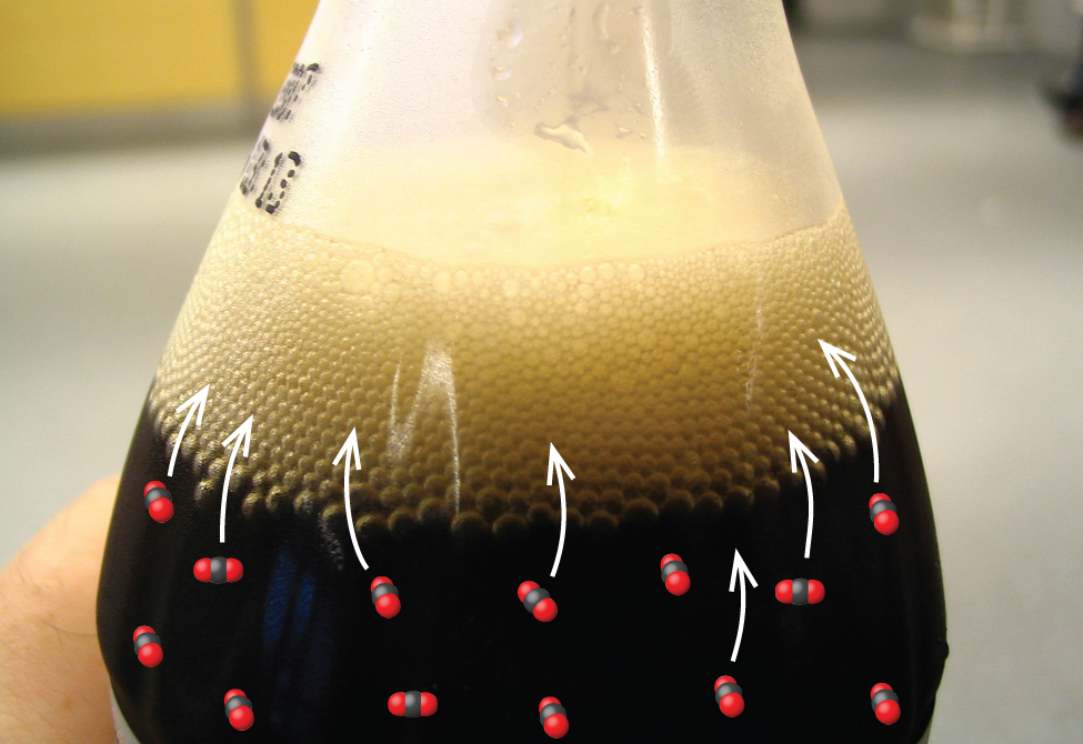 A bottle of soda sitting on the ground is shown with a large amount of fizz-filled liquid spewing out of the top.