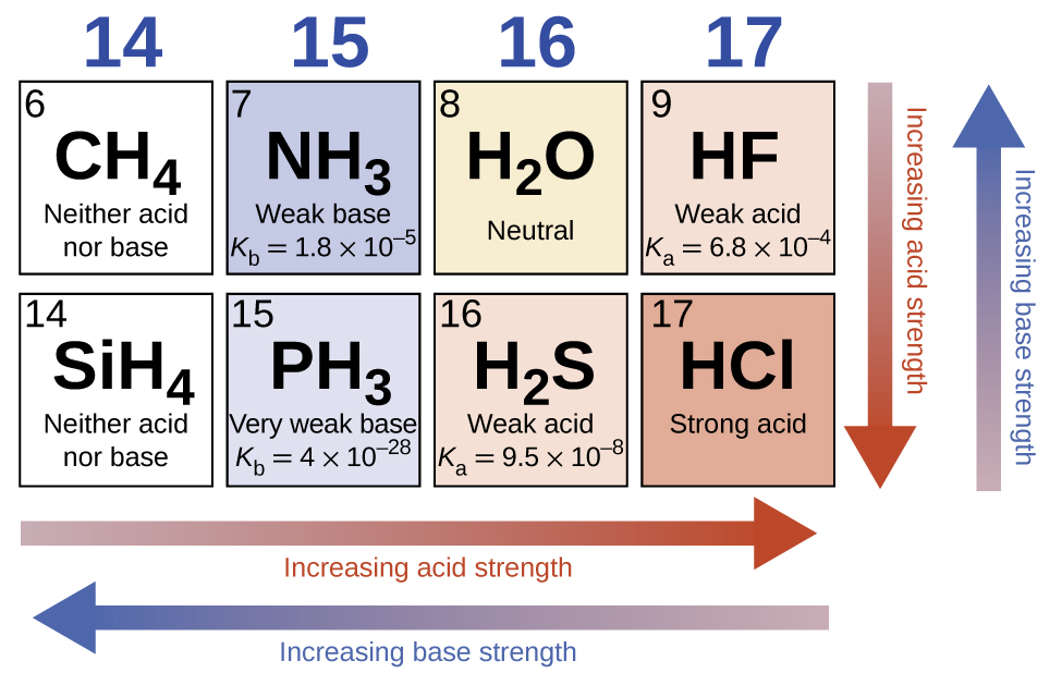 """This diagram has two rows and four columns. Red arrows point left across the bottom of the figure and down at the right side and are labeled """"Increasing acid strength."""" Blue arrows point left across the bottom and up at the right side of the figure and are labeled """"Increasing base strength."""" The first column is labeled 14 at the top and two white squares are beneath it. The first has the number 6 in the upper left corner and the formula C H subscript 4 in the center along with designation Neither acid nor base. The second square contains the number 14 in the upper left corner, the formula C H subscript 4 at the center and the designation Neither acid nor base. The second column is labeled 15 at the top and two blue squares are beneath it. The first has the number 7 in the upper left corner and the formula N H subscript 3 in the center along with the designation Weak base and K subscript b equals 1.8 times 10 superscript negative 5. The second square contains the number 15 in the upper left corner, the formula P H subscript 3 at the center and the designation Very weak base and K subscript b equals 4 times 10 superscript negative 28. The third column is labeled 16 at the top and two squares are beneath it. The first is shaded tan and has the number 8 in the upper left corner and the formula H subscript 2 O in the center along with the designation neutral. The second square is shaded pink, contains the number 16 in the upper left corner, the formula H subscript 2 S at the center and the designation Weak acid and K subscript a equals 9.5 times 10 superscript negative 8. The fourth column is labeled 17 at the top and two squares are beneath it. The first is shaded pink, has the number 9 in the upper left corner and the formula H F in the center along with the designation Weak acid and K subscript a equals 6.8 times 10 superscript negative 4. The second square is shaded a deeper pink, contains the number 17 in the upper left corner, the formula H C l at the center, and t"""