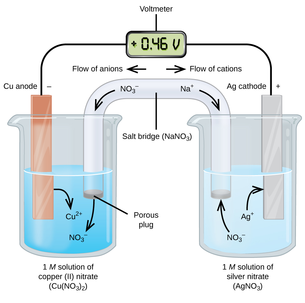 "This figure contains a diagram of an electrochemical cell. Two beakers are shown. Each is just over half full. The beaker on the left contains a blue solution and is labeled below as ""1 M solution of copper (II) nitrate ( C u ( N O subscript 3 ) subscript 2 )."" The beaker on the right contains a colorless solution and is labeled below as ""1 M solution of silver nitrate ( A g N O subscript 3 )."" A glass tube in the shape of an inverted U connects the two beakers at the center of the diagram. The tube contents are colorless. The ends of the tubes are beneath the surface of the solutions in the beakers and a small grey plug is present at each end of the tube. The plug in the left beaker is labeled ""Porous plug."" At the center of the diagram, the tube is labeled ""Salt bridge ( N a N O subscript 3 ). Each beaker shows a metal strip partially submerged in the liquid. The beaker on the left has an orange brown strip that is labeled ""C u anode negative"" at the top. The beaker on the right has a silver strip that is labeled ""A g cathode positive"" at the top. A wire extends from the top of each of these strips to a rectangular digital readout indicating a reading of positive 0.46 V that is labeled ""Voltmeter."" An arrow points toward the voltmeter from the left which is labeled ""Flow of electrons."" Similarly, an arrow points away from the voltmeter to the right which is also labeled ""Flow of electrons."" A curved arrow extends from the C u strip into the surrounding solution. The tip of this arrow is labeled ""C u superscript 2 plus."" A curved arrow extends from the salt bridge into the beaker on the left into the blue solution. The tip of this arrow is labeled ""N O subscript 3 superscript negative."" A curved arrow extends from the solution in the beaker on the right to the A g strip. The base of this arrow is labeled ""A g superscript plus."" A curved arrow extends from the colorless solution to salt bridge in the beaker on the right. The base of this arrow is labeled ""N O subscript 3 superscript negative."" Just right of the center of the salt bridge on the tube an arrow is placed on the salt bridge that points down and to the right. The base of this arrow is labeled ""N a superscript plus."" Just above this region of the tube appears the label ""Flow of cations."" Just left of the center of the salt bridge on the tube an arrow is placed on the salt bridge that points down and to the left. The base of this arrow is labeled ""N O subscript 3 superscript negative."" Just above this region of the tube appears the label ""Flow of anions."""