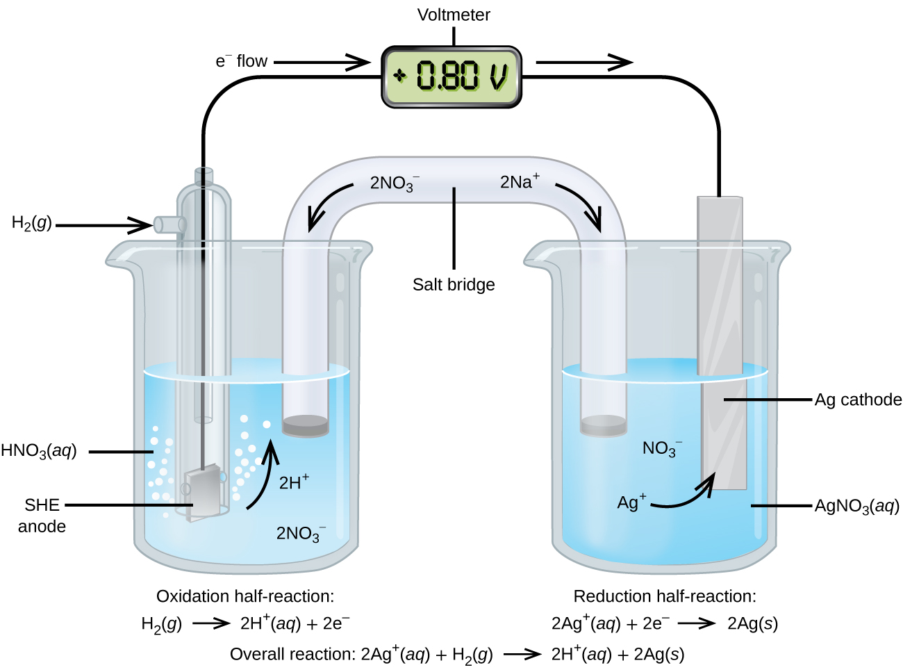 """This figure contains a diagram of an electrochemical cell. Two beakers are shown. Each is just over half full. The beaker on the left contains a clear, colorless solution which is labeled """"H N O subscript 3 ( a q )."""" The beaker on the right contains a clear, colorless solution which is labeled """"A g N O subscript 3 ( a q )."""" A glass tube in the shape of an inverted U connects the two beakers at the center of the diagram and is labeled """"Salt bridge."""" The tube contents are colorless. The ends of the tubes are beneath the surface of the solutions in the beakers and a small grey plug is present at each end of the tube. The label """"2 N a superscript plus"""" appears on the upper right portion of the tube. A curved arrow extends from this label down and to the right. The label """"2 N O subscript 3 superscript negative"""" appears on the upper left portion of the tube. A curved arrow extends from this label down and to the left. The beaker on the left has a glass tube partially submerged in the liquid. Bubbles are rising from the grey square, labeled """"SHE anode"""" at the bottom of the tube. A curved arrow points up to the right. The labels """"2 H superscript plus"""" and """"2 N O subscript 3 superscript negative"""" appear on the liquid in the beaker. A black wire extends from the grey square up the interior of the tube through a small port at the top to a rectangle with a digital readout of """"positive 0.80 V"""" which is labeled """"Voltmeter."""" A second small port extends out the top of the tube to the left. An arrow points to the port opening from the left. The base of this arrow is labeled """"H subscript 2 ( g )."""" The beaker on the right has a silver strip that is labeled """"A g cathode."""" A wire extends from the top of this strip to the voltmeter. An arrow points toward the voltmeter from the left which is labeled """"e superscript negative flow."""" Similarly, an arrow points away from the voltmeter to the right. The solution in the beaker on the right has the labels """"N O subscript 3 superscript negative"""" a"""