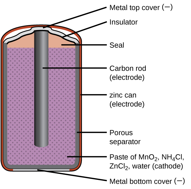 """A diagram of a cross section of a dry cell battery is shown. The overall shape of the cell is cylindrical. The lateral surface of the cylinder, indicated as a thin red line, is labeled """"zinc can (electrode)."""" Just beneath this is a slightly thicker dark grey surface that covers the lateral surface, top, and bottom of the battery, which is labeled """"Porous separator."""" Inside is a purple region with many evenly spaced small darker purple dots, labeled """"Paste of M n O subscript 2, N H subscript 4 C l, Z n C l subscript 2, water (cathode)."""" A dark grey rod, labeled """"Carbon rod (electrode),"""" extends from the top of the battery, leaving a gap of less than one-fifth the height of the battery below the rod to the bottom of the cylinder. A thin grey line segment at the very bottom of the cylinder is labeled """"Metal bottom cover (negative)."""" The very top of the cylinder has a thin grey surface that curves upward at the center over the top of the carbon electrode at the center of the cylinder. This upper surface is labeled """"Metal top cover (positive)."""" A thin dark grey line just below this surface is labeled """"Insulator."""" Below this, above the purple region, and outside of the carbon electrode at the center is an orange region that is labeled """"Seal."""""""