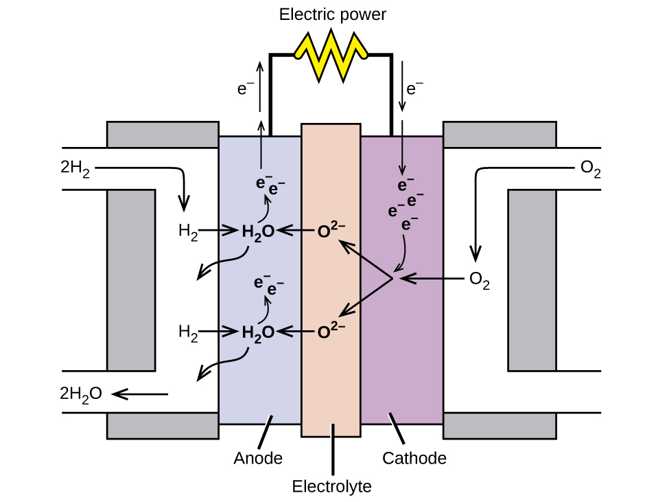 """A diagram is shown of a hydrogen fuel cell. At the center is a narrow vertical rectangle which is shaded tan and labeled """"Electrolyte."""" To the right is a slightly wider and shorter purple rectangle which is labeled """"Cathode."""" To the left is a rectangle of the same size which is labeled """"Anode."""" Grey rectangles that are slightly wider and longer are at the right and left sides, attached to the purple and blue rectangles. On the right side, a white region overlays the grey rectangle. This white region provides a pathway for O subscript 2 to enter at the upper left, move inward and along the interface with the purple region, and exit to the lower right. A similar pathway overlays the grey region on the left, allowing a pathway for the entry of H subscript 2 from the upper right along the interface with the blue rectangle, allowing for the exit of H subscript 2 O out to the lower left of the diagram. Black line segments extend upward from the blue and purple regions. These line segments are connected by a horizontal segment that has a yellow zig zag shape at the center. This shape is labeled """"Electric power."""" At the left of the diagram, in the upper left white region, 2 H subscript 2 is followed by an arrow that points right and down to H subscript 2. An arrow points right into the blue region to H subscript 2 O. A curved arrow point up to e superscript negative. Another e superscript negative is placed nearby and has an upward pointing arrow extending up to the left of the line segment extending from the purple region. A second arrow points upward along this segment with the label """"e superscript negative"""" to its left. A curved arrow extends down and to the left from the H subscript 2 O into the white region. A second H subscript 2 O is shown below the first in the blue region repeating the arrow patterns established above. At the lower left, an arrow points left, to the exit of the white region. At the tip of this arrow is the label """"2 H subscript 2 O."""" In the central """