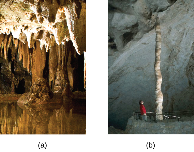 """Two photographs are shown and labeled, """"a"""" and """"b."""" Photo a shows stalactites clinging to the ceiling of a cave while photo b shows a stalagmite growing from the floor of a cave."""