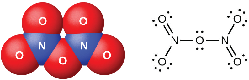 """A space-filling model and a Lewis structure are shown. The space-filling model shows two blue atoms labeled, """"N,"""" each bonded to two red atoms labeled, """"O,"""" with another red atom labeled, """"O,"""" in between them. The Lewis structure shows a nitrogen atom single bonded to an oxygen atom with three lone pairs of electrons in a downward position and double bonded to an oxygen atom with two lone pairs of electrons in an upward position. This nitrogen is single bonded to an oxygen atom with two lone pairs of electrons. The oxygen atom is single bonded to another nitrogen atom which is single bonded to another oxygen atom with three lone pairs of electrons in an upward position. The second nitrogen atom is also double bonded to an oxygen atom with two lone pairs of electrons in a downward position."""