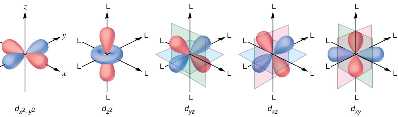 """This figure includes diagrams of five d orbitals. Each diagram includes three axes. The z-axis is vertical and is denoted with an upward pointing arrow. It is labeled """"z"""" in the first diagram. Arrows similarly identify the x-axis with an arrow pointing from the rear left to the right front, diagonally across the figure and the y-axis with an arrow pointing from the left front diagonally across the figure to the right rear of the diagram. These axes are similarly labeled as """"x"""" and """"y."""" In this first diagram, four orange balloon-like shapes extend from a point at the origin out along the x- and y- axes in positive and negative directions covering just over half the length of the positive and negative x- and y- axes. Beneath the diagram is the label, """"d subscript ( x superscript 2 minus y superscript 2 )."""" The second diagram just right of the first is similar except the x, y, and z labels have been replaced in each instance with the letter L. Only a pair of the orange balloon-like shapes are present and extend from the origin above and below along the vertical axis. An orange toroidal or donut shape is positioned around the origin, oriented through the x- and y- axes. This shape extends out to about a third of the length of the positive and negative regions of the x- and y- axes. This diagram is labeled, """"d subscript ( z superscript 2 )."""" The third through fifth diagrams, similar to the first, show four orange balloon-like shapes. These diagrams differ however in the orientation of the shapes along the axes and the x-, y-, and z-axis labels have each been replaced with the letter L. Planes are added to the figures to help show the orientation differences with these diagrams. In the third diagram, a green plane is oriented vertically through the length of the x-axis and a blue plane is oriented horizontally through the length of the y-axis. The balloon shapes extend from the origin to the spaces between the positive z- and negative y- axes, positive z- and positive y- """
