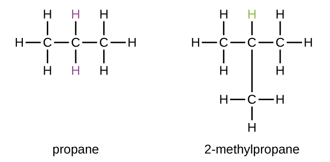 In this figure, propane is shown as a chain of three bonded C atoms. Eight H atoms are shown with three bonded to the first C atom, two to the middle C atom, and three to the third C atom. The H atoms bonded to the middle C atom are purple. 2 dash methylpropane is also shown, which similarly has a chain of three bonded C atoms. In this structure, A C atom is bonded beneath the middle C atom of the chain. Ten H atoms are shown with three bonded to the first C atom, one to the middle C atom, three to the third C atom, and three to the C atom also bonded to the middle C atom. The H atom bonded to the middle C atom is green.
