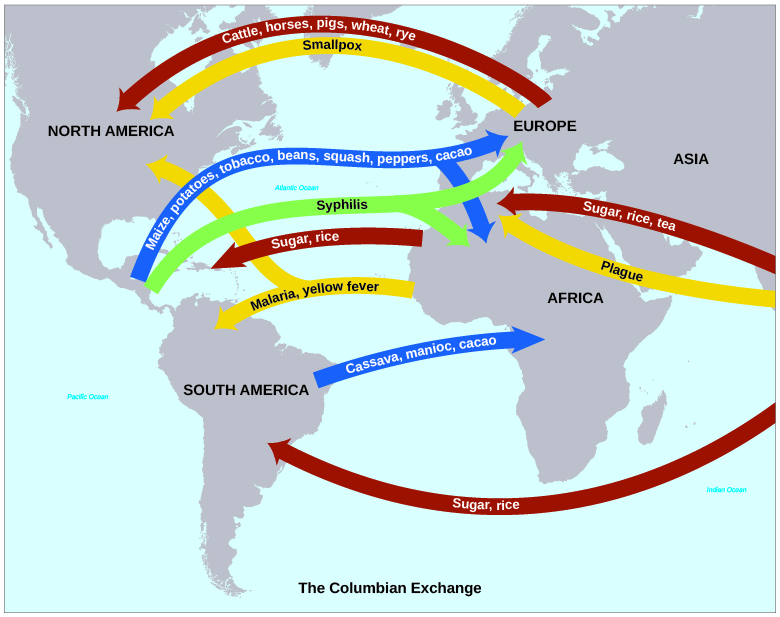 U.S. History - New Worlds in the Americas: Labor, Commerce ...