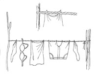 p565washing.web.jpg