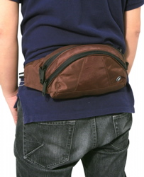 StashSafe 100 Hip Pack