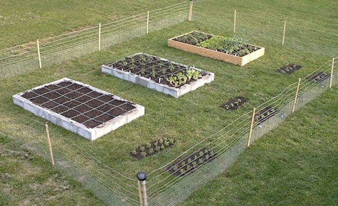 All New Square Foot Gardening Cool Tools