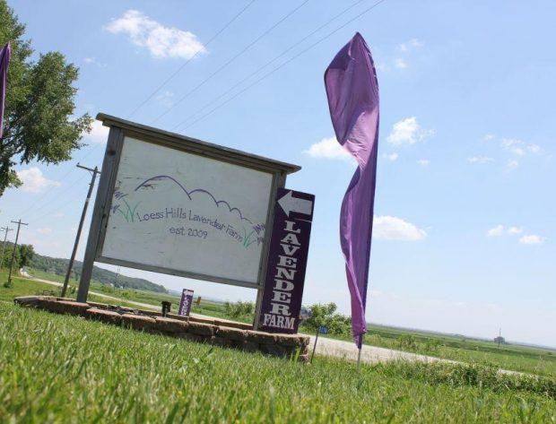 HCREC July Membership Spotlight - Loess Hills Lavender Farm