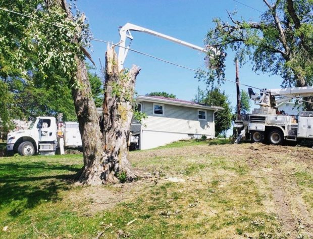 Why Electric Utilties Don't Bury All Power Lines