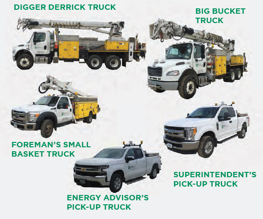 Image of all the different trucks