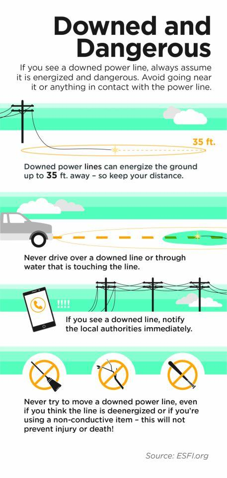 Downed and Dangerous Image: If you see a downed power line, always assume it is energized and dangerous. Avoid going near it or anything in contact with the power line.