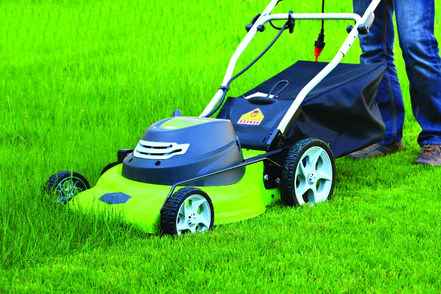 Photo of an electric lawn mower