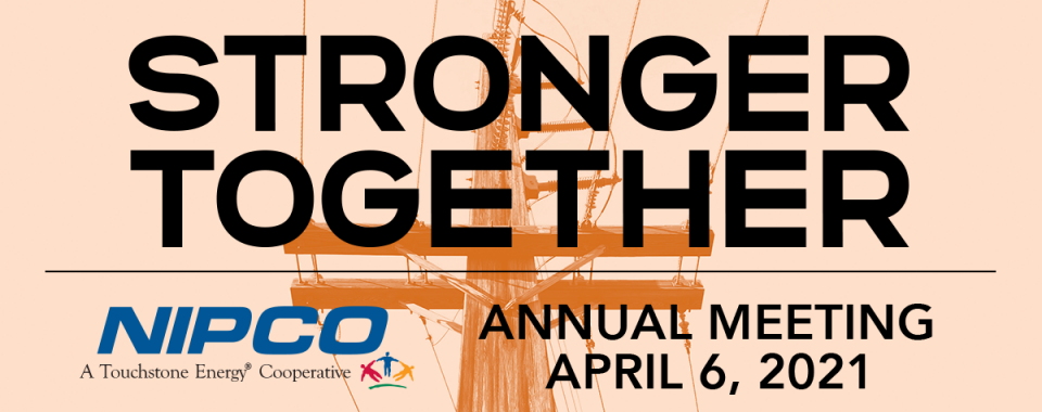 """Graphic Image of the 2021 NIPCO Annual Meeting logo: """"Stronger Together"""""""