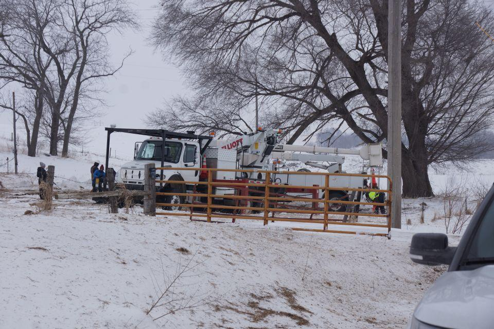 Photo of line crew and a bucket truck working at the base of an old, oak tree.