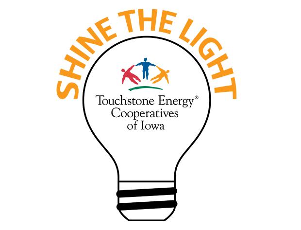 Shine the Light bulb logo