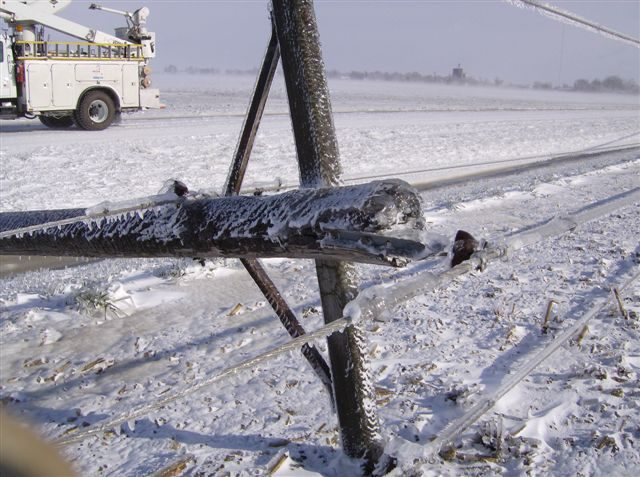 Downed power line in the snow