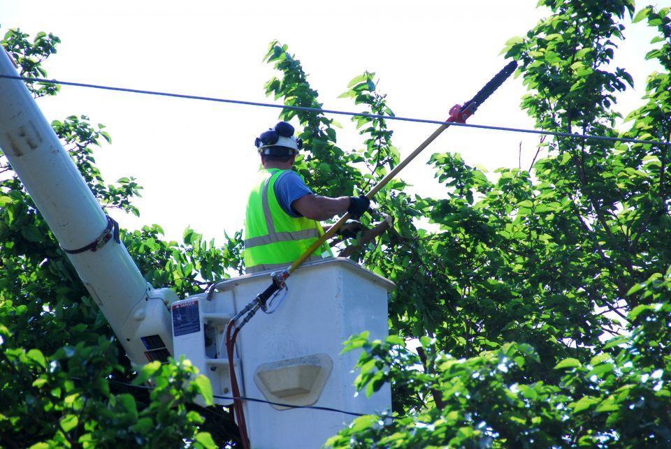 lineman in bucket trimming tree near power lines