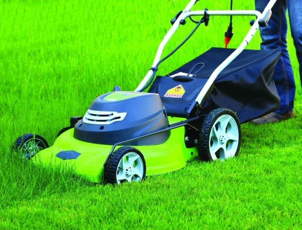 Photo of electric lawn mower