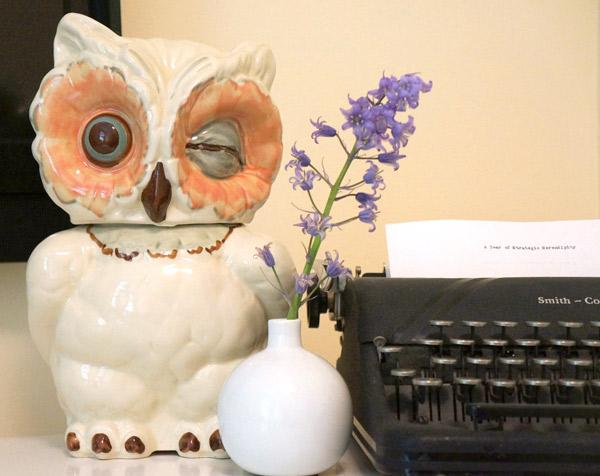 Shawnee winking owl