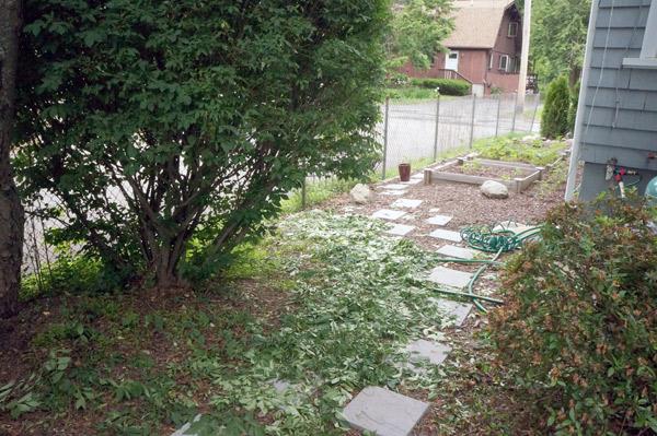 yard-mess
