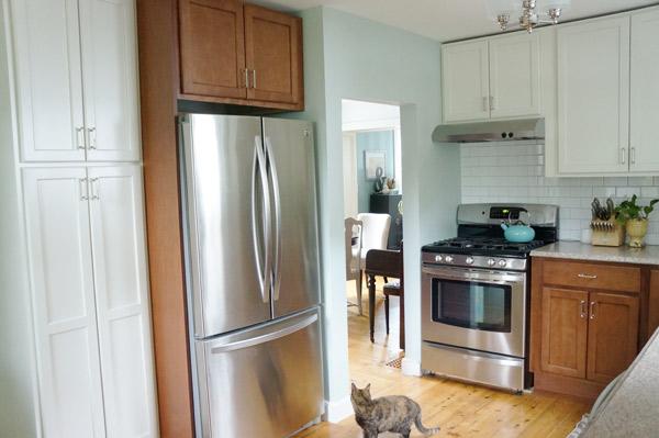 kitchen fridge reveal
