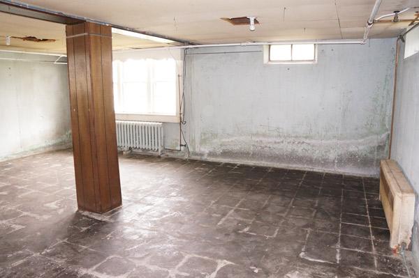 frankie-basement-before1