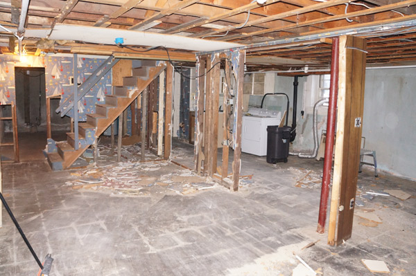 week 2 basement demo