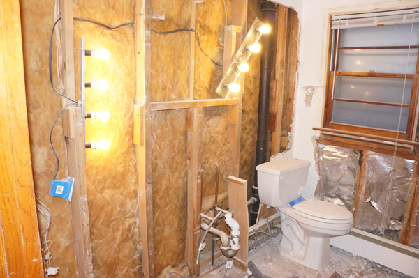 week 2 bathroom demo 1