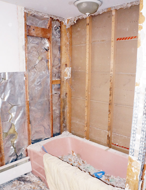 week 2 bathroom demo 2