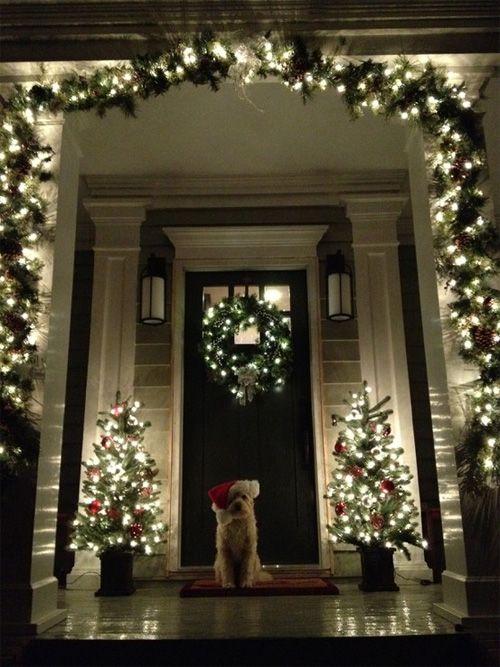 dog christmas porch