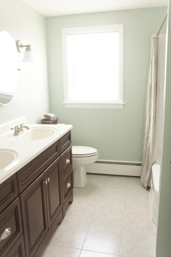 Frankie Flip House Bathroom After 1