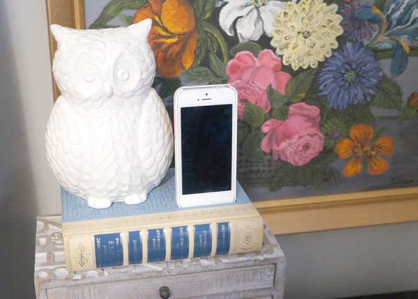 DIY iphone dock 1
